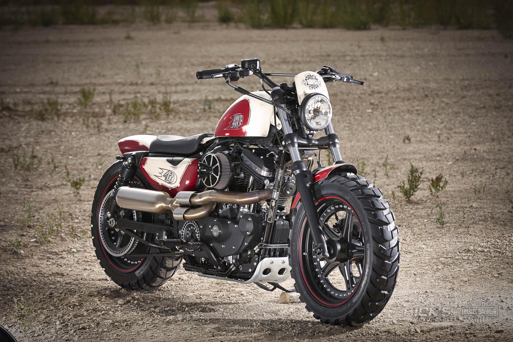 """Harley Davidson: Big Foot Sportster """"48"""""""