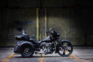 Trike Ricks 26Zoll 025