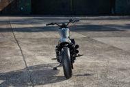 Sportster 883 Iron Custom King 006