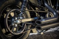Harley-Davidson Sportster Custom Schwinge