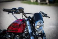 Harley-Davidson Sportster Custom Windshield