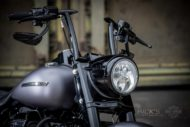 Harley-Davidson Road King Custom Apehangar