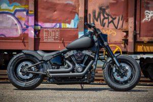 Harley Davidson Fat Bob Milw 8 Ricks 015 Kopie