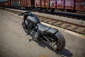 Harley Davidson Fat Bob Milw 8 Ricks 061