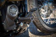 Harley Davidson Street Bob grey Custom Ricks 057