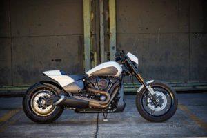 Harley Davidson FXDR Custom Ricks 014