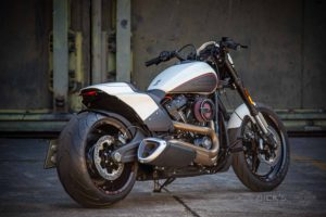 Harley Davidson FXDR Custom Ricks 090