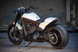 Harley Davidson FXDR Custom Ricks 102