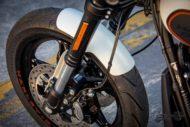 Harley Davidson FXDR Custom Ricks 170