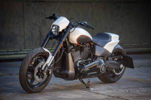 Harley Davidson FXDR Custom Ricks 186
