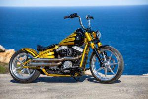 Harley Davidson Softail Slim Bobber 004