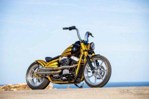 Harley Davidson Softail Slim Bobber 020