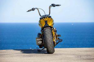 Harley Davidson Softail Slim Bobber 069 Kopie