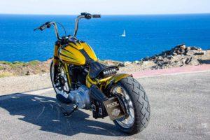Harley Davidson Softail Slim Bobber 074 Kopie