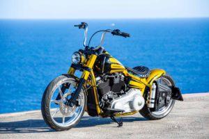 Harley Davidson Softail Slim Bobber 112