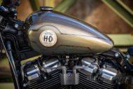 Harley Davidson Street Bob Bobber 037