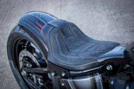 Harley Davidson Street Bob Custom Ricks 026