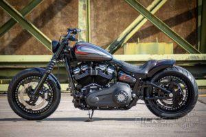 Harley Davidson Street Bob Custom Ricks 047