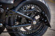 Harley Davidson Street Bob Custom Ricks 049