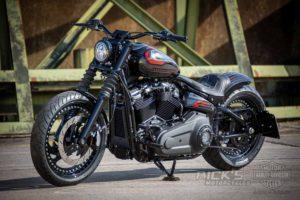 Harley Davidson Street Bob Custom Ricks 060