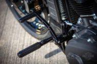 Harley Davidson Street Bob Custom Ricks 063