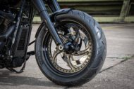 Harley Davidson Fat Boy Custom Ricks 035 1