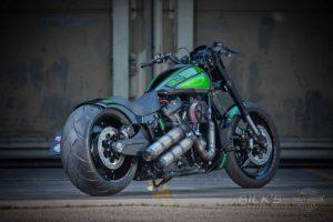 Harley Davidson FXDR Custom Ricks 030
