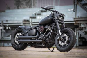Harley Davidson Fat Bob Bob Custom Ricks 003