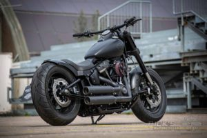 Harley Davidson Fat Bob Bob Custom Ricks 006