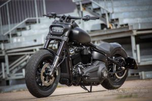 Harley Davidson Fat Bob Bob Custom Ricks 019
