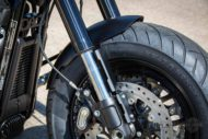 Harley Davidson Fat Bob Bob Custom Ricks 030