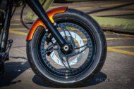 Harley Davidson Fat Boy 300 Custom Ricks 014