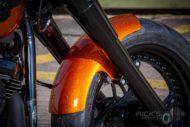 Harley Davidson Fat Boy 300 Custom Ricks 016