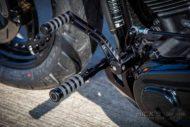 Harley Davidson Fat Boy 300 Custom Ricks 035