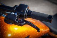 Harley Davidson Fat Boy 300 Custom Ricks 037
