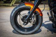 Harley Davidson Fat Boy 300 Custom Ricks 047