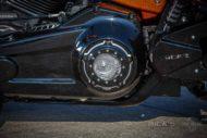 Harley Davidson Fat Boy 300 Custom Ricks 050