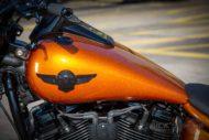 Harley Davidson Fat Boy 300 Custom Ricks 051