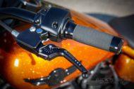 Harley Davidson Fat Boy 300 Custom Ricks 053