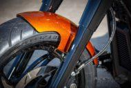 Harley Davidson Fat Boy 300 Custom Ricks 063
