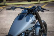 Harley Davidson Softail Slim 300 Custom Ricks 014 1