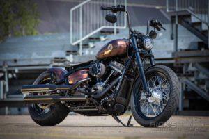 Harley Davidson Street Bob Ricks Custom Bobber 002