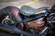 Harley Davidson Street Bob Ricks Custom Bobber 008
