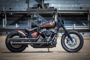 Harley Davidson Street Bob Ricks Custom Bobber 010