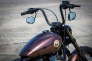 Harley Davidson Street Bob Ricks Custom Bobber 042