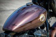 Harley Davidson Street Bob Ricks Custom Bobber 043