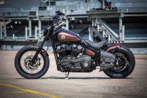 Harley Davidson Street Bob Ricks Custom Bobber 061