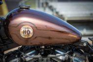 Harley Davidson Street Bob Ricks Custom Bobber 070