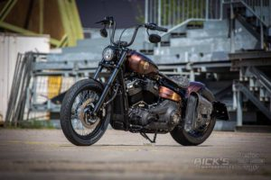 Harley Davidson Street Bob Ricks Custom Bobber 075