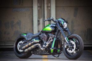 Harley Davidson FXDR Custom Ricks 001